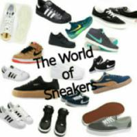 The World of Sneakers